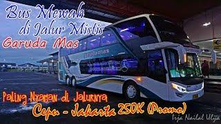 Video BUS TERMAHAL TINGKAT MEWAH di JALUR MISTIS !!. Trip by Double Deck Garuda Mas Cepu-JKT [Part 1] MP3, 3GP, MP4, WEBM, AVI, FLV Juni 2018