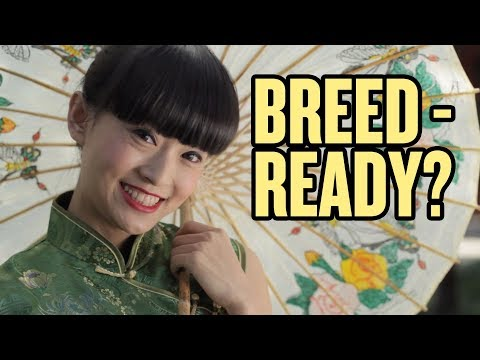 """Are Chinese Girls """"Breed Ready?"""" 