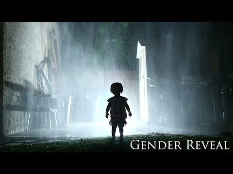 The Sequel Gender Reveal A Horror Movie Trailer Announcing a Husband and Wife s Second