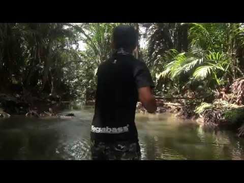 Papuan Black Bass fishing 2014 Part-1