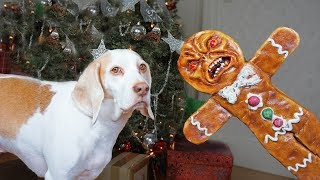 Dogs vs Evil Gingerbread Man Prank: Funny Dogs Maymo & Potpie by Maymo
