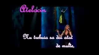 Celine Dion - Pour que tu m'aimes encore (traducere lb.romana)