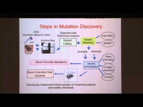 Role of Basic and Translational Science in Discovery of New Treatments for Melanoma