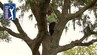 Difficult lies in trees, bushes and cactuses by PGA TOUR