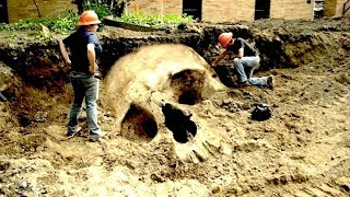 7 Mysterious Cases Of Human Giants