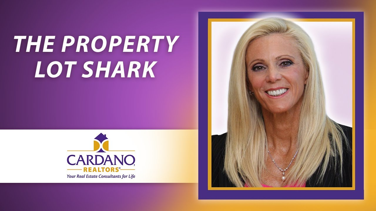 Fight Off the Property Lot Shark and Maximize Your Home's Value