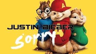 Video Justin Bieber - sorry (Chipmunk Cover) MP3, 3GP, MP4, WEBM, AVI, FLV Oktober 2018