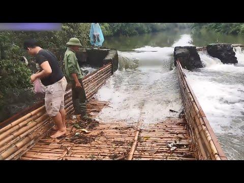 Cách Người Mường Bắt Cá Mùa Lũ - Góc Nhìn Khám Phá