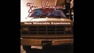 """Studio version from the album, """"New Miserable Experience"""" (1992)."""
