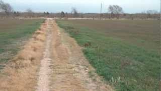 Marlin (TX) United States  City pictures : For Sale: 190 Acres Cultivated Land near Marlin, TX