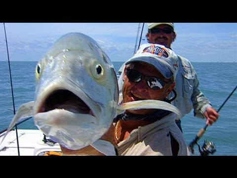 Addictive Fishing: Hour Jacks – BIG JACK CREVALLE fishing on the Space Coast