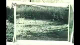 Záhady Světa 10 UFO