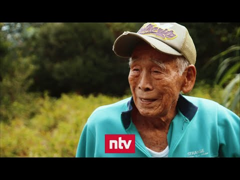 Ogimi, das »Dorf der Hundertjährigen« in Japan | nt ...