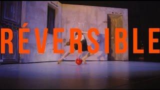 le Duo Silliau dans la nouvelle creation REVERSIBLE , des 7 doigts de la main , AU BATACLAN, Paris..