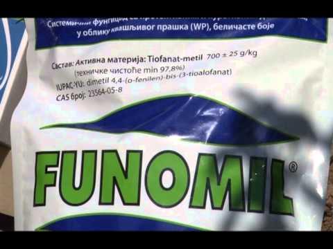 Afinex, Nurelle, Funomil u Nektarini - Suvodol 2011.