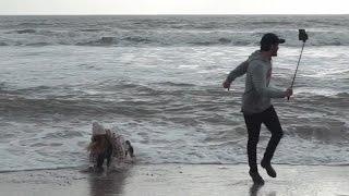 ZOE FALLS IN THE SEA