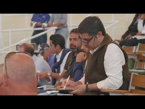 Tattersalls July Sale Day 3 2018