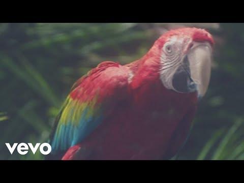 Calvin Harris - Funk Wav Bounces Vol. 1 - Album Preview