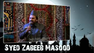 Syed Zabeeb Masood in rotterdam holland may 2013