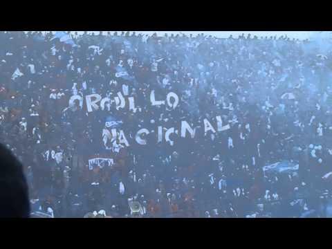 LBDP vs Danubio - 5° FECHA APERTURA 2014 - RECIBIMIENTO - La Banda del Parque - Nacional