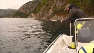 FISKING I BRANDSFJORDEN ( ROAN ) ( BESSAKER )