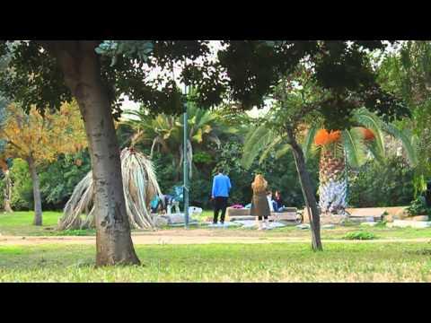 Ένας άλλος κόσμος [ντοκιμαντέρ Ηλιόσποροι 2013]