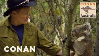 Video Conan Encounters Australian Wildlife - CONAN on TBS MP3, 3GP, MP4, WEBM, AVI, FLV Juli 2019