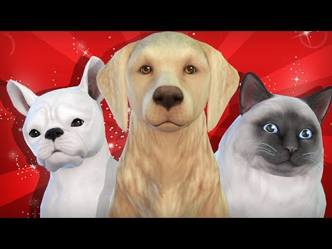 The Sims 4: Cats & Dogs - First Impressions (Live Gameplay, Buy, & Build)