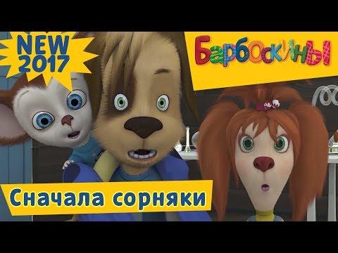 Барбоскины - 177 серия. Сначала - сорняки! Новая серия! (видео)