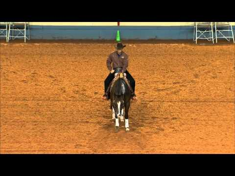 2012 AQHA Reining World Champion - LIL JOE CASH