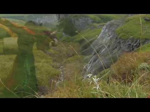 'Danse la nature' : Poème de Nicole Coppey