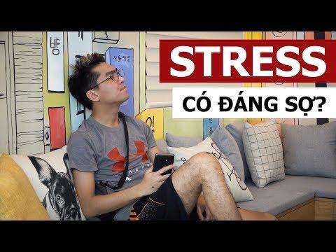 STRESS LIỆU CÓ ĐÁNG SỢ? (Chuyện của Giáo Sư Chuối #2) - Thời lượng: 2 phút, 18 giây.