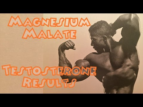 Magnesium Malate Testosterone Results – Bodybuilding Tips To Get Big