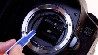 Canon EOS 60D Tutorial - Interchangeable Focus Screens 14/14