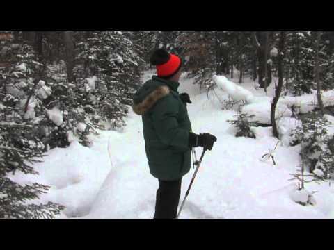 Hiawatha National Forest Manistique Ranger District - Great Getaways