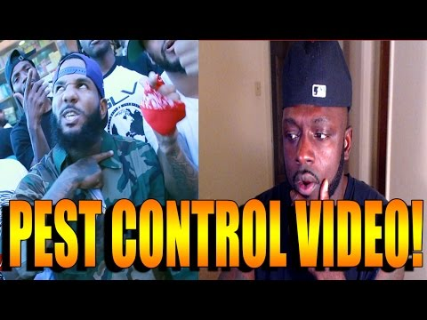 """The Game """"Pest Control"""" (Meek Mill Diss) (WSHH Exclusive - Official Music Video) REACTION"""