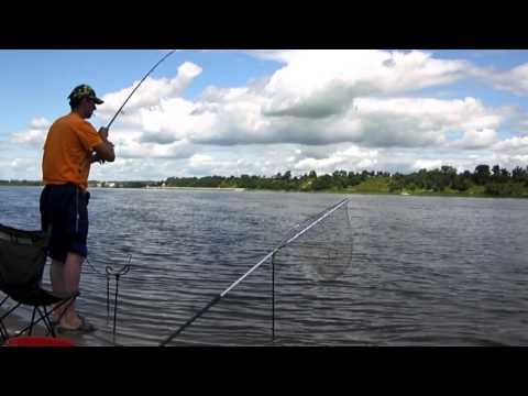 рыбалка в нижегородской области на кольцо