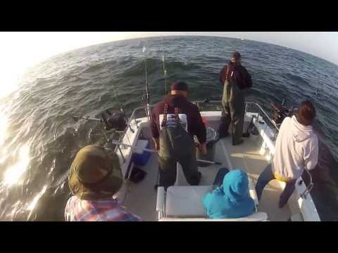North Cal Sportfishing - Salmon Fishing Bodega Bay, California july 4, 2013 On