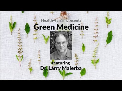 Green Medicine: A Holistic Approach to Health with Dr. Larry Malerba