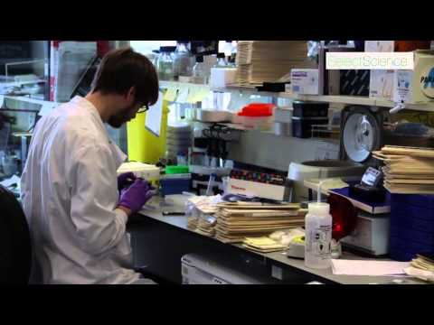 Extracellular Matrices: Innovative Cancer Research at Beatson Institute
