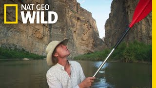 Wildlife and the Wall | WILDxRED by Nat Geo WILD