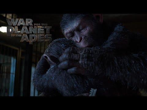 La Guerra del Planeta de los Simios - A Father Becomes Legend?>