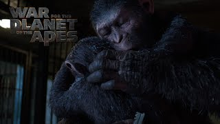VIDEO: WAR FOR THE PLANET OF THE APES – A Father Becomes Legend Trailer
