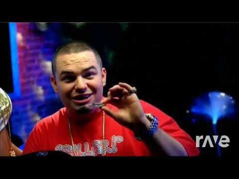 Hot In Grillz - Nelly & Nelly ft. Paul Wall, Ali, Gipp | RaveDj