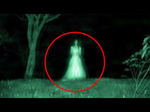 15 PARANORMAL CREATURES AND BEASTS
