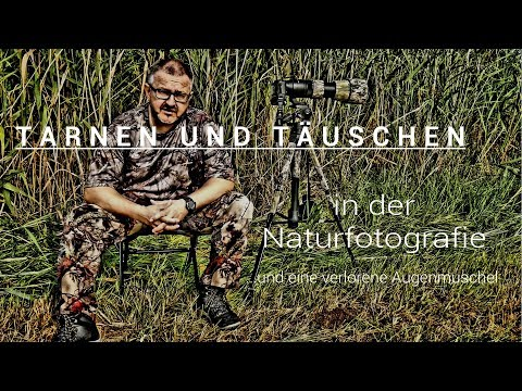 Naturfotografie: Tarnen und Täuschen :: von Foto-Blende