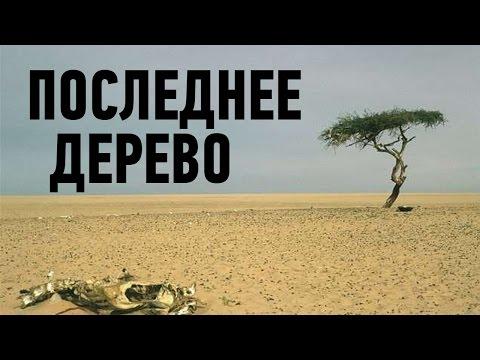 10 ПОСЛЕДНИХ В СВОЁМ РОДЕ - DomaVideo.Ru