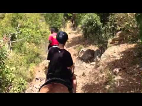 Beach horse back riding St Thomas