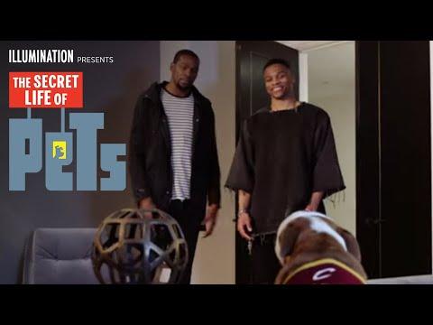 The Secret Life of Pets (Viral Video 'NBA Pets 2')