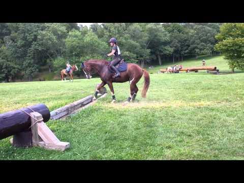 這匹馬兒遇到他一生中最大的挑戰,在他猶豫很久終於跳過去時,他跳的方法讓我需要把飯撿起來!